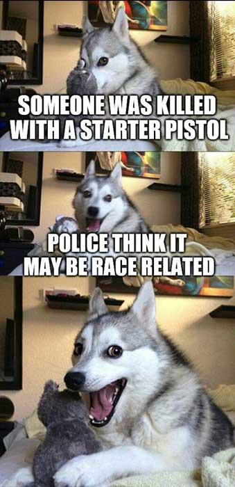 Meme-husky-dog-starter-pistol-