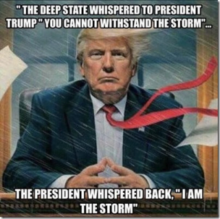 Trump i am the storm_thumb[1]