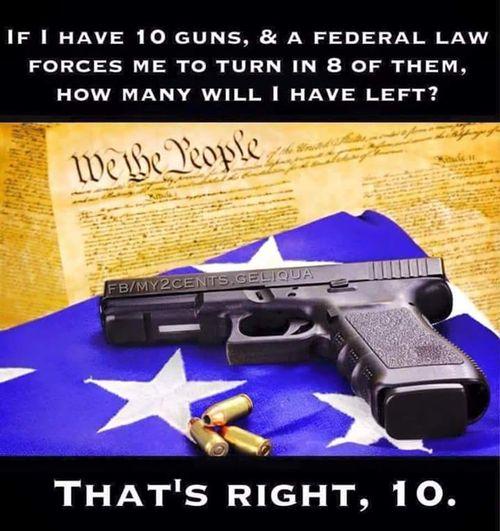 Federal-government-wont-get-guns