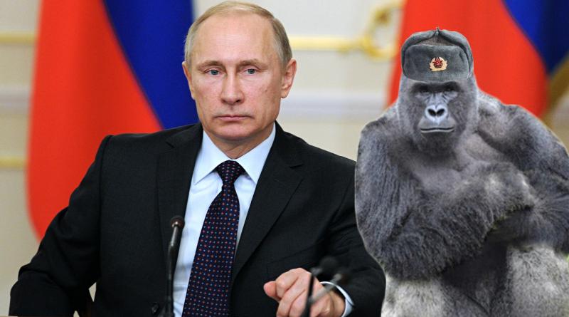Putinharambe