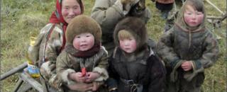 Arctic_family_1024